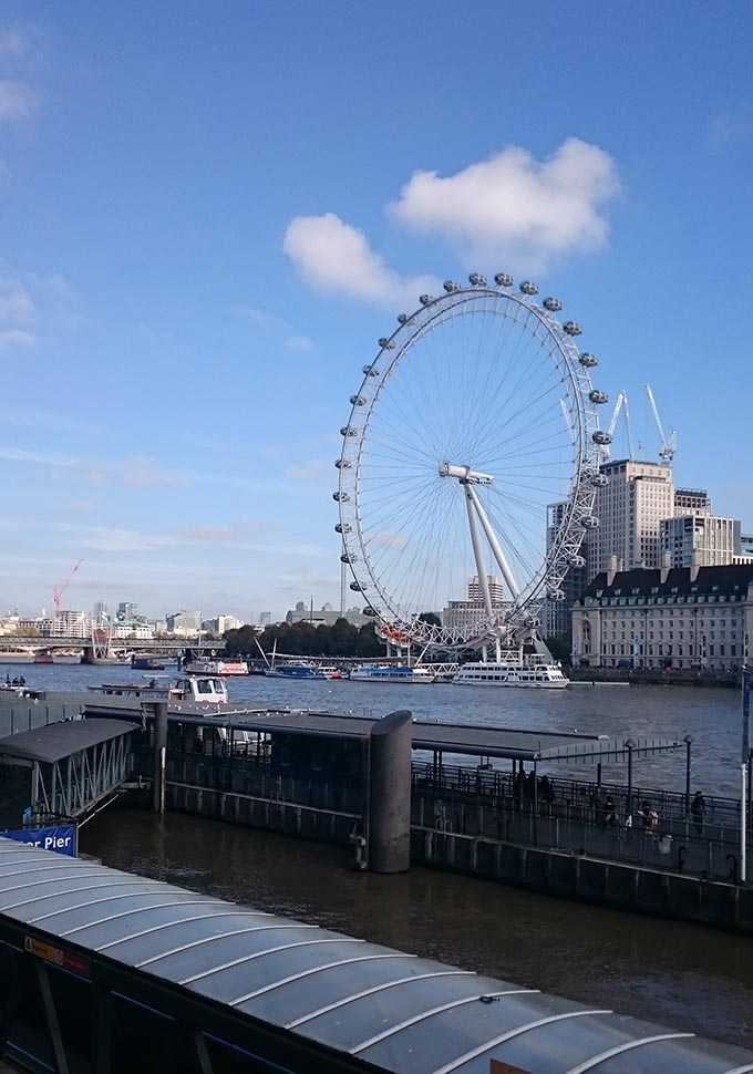 View of London's eye from across the Thames river bank.