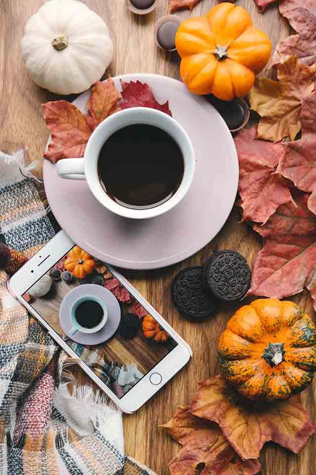 A flatlay of a cup of coffee, a white smartphone, small white and orange pumpkins, autumn leaves and a scarf