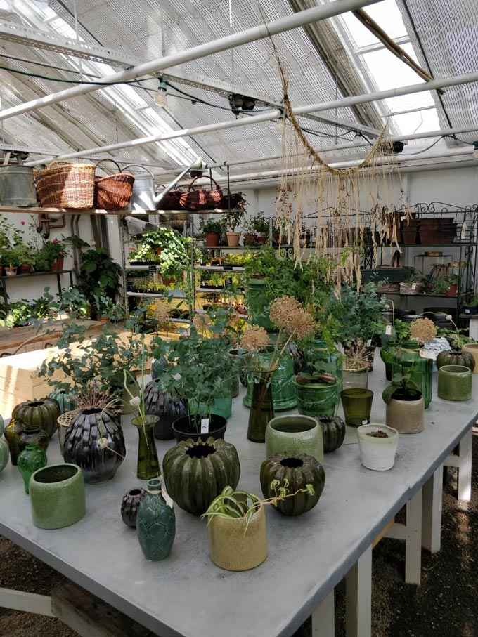 A greenhouse with an array of planters on a working bench.