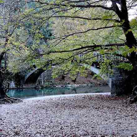 A beautiful stone bridge over clear blue river waters in the Voidomatis - Aoos National Park
