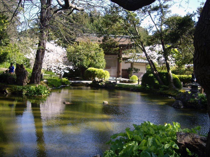 Another view of the Japanese Garden in San Francisco with a pond.