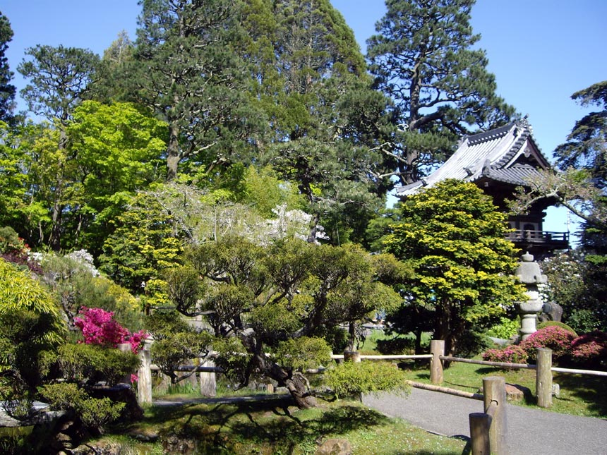 View of the Japanese Garden in San Francisco.