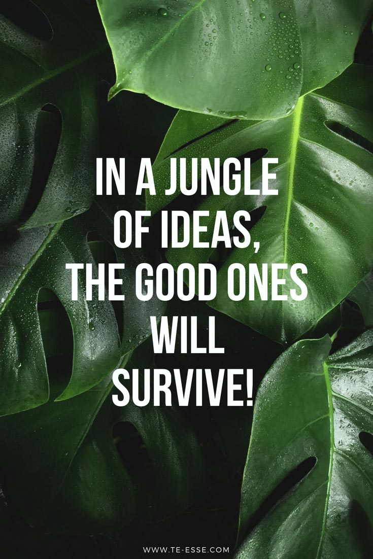 In a jungle of ideas, the good ones will survive - quote reads with green jungle leaves in the background. Original photo by Bart Zimny on Unsplash.