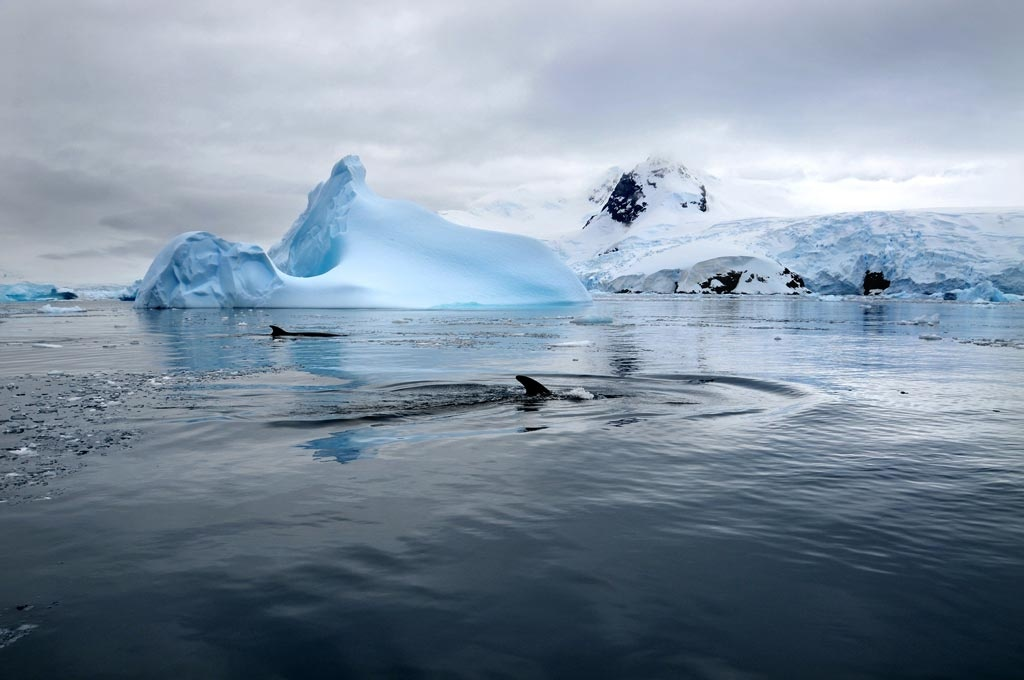Image of Antarctica captured by Marina Vernicos.