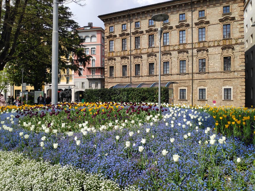 A beautiful array of colorful flowers in beds on a little square in the Old Town of Lugano.