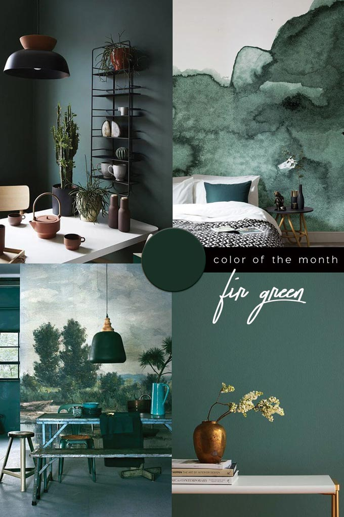 A moodboard based on fir green, one of the trending colors on the spotlight for 2020.